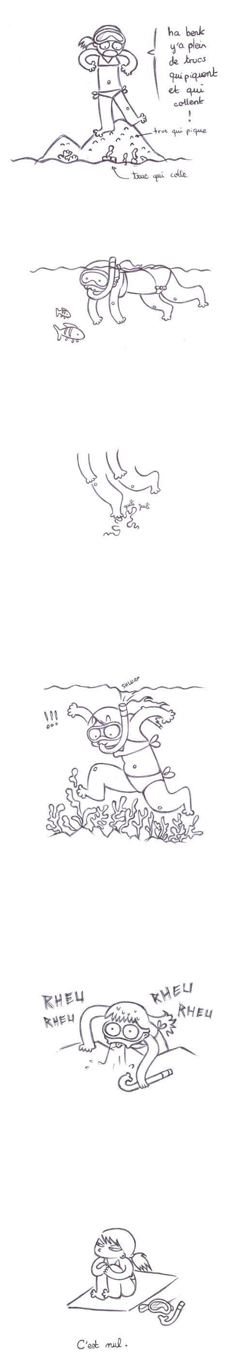 plongee en corse