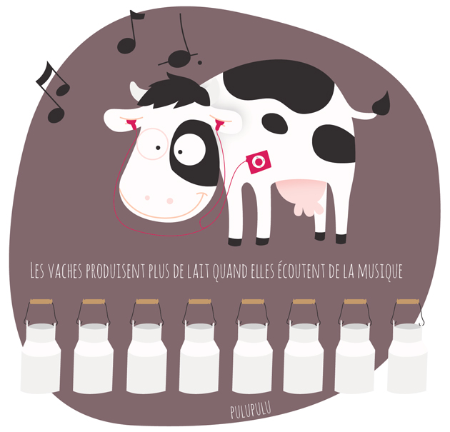 De la musique douce pour plus de production de lait