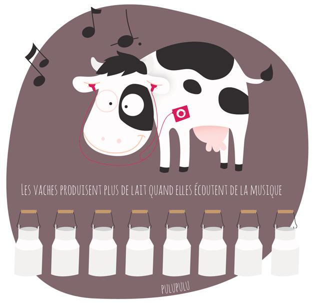 De la musique douce pour plus de production de lait