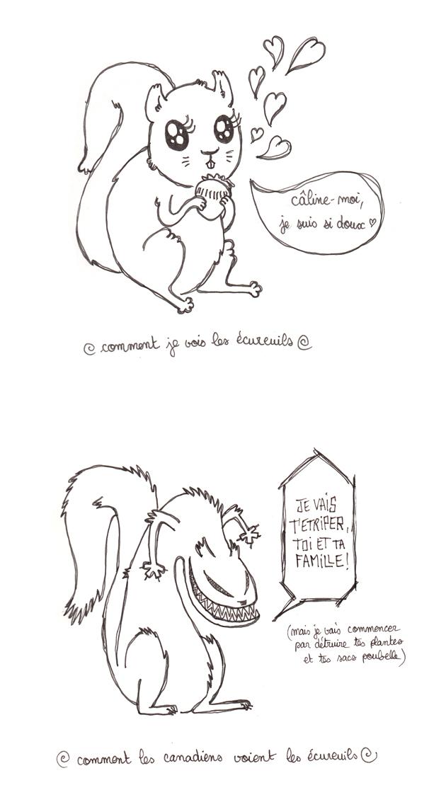 comment les canadiens voient les écureuils